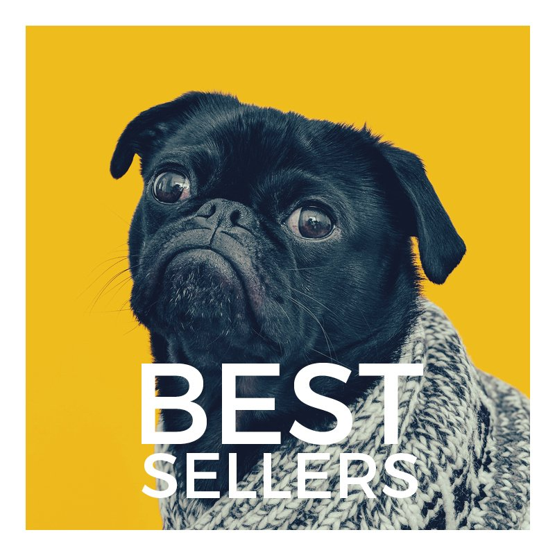 Best Selling Dog Products