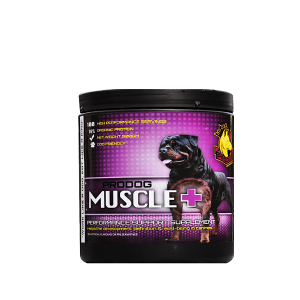 Muscle+ Advanced Mass Gainer
