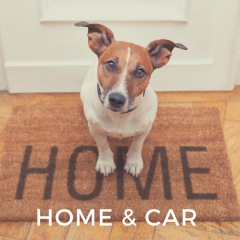Home & Car Must Haves